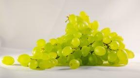 Una rama de uvas apetitosas maduras fotos de archivo libres de regalías