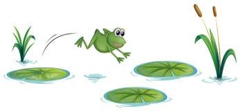 Una rana en la charca con los waterlilies ilustración del vector