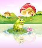 Una rana sopra la a waterlily Immagini Stock