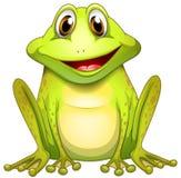Una rana sorridente Fotografia Stock