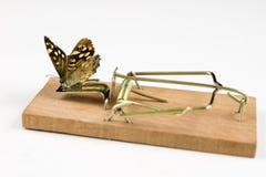 Una ratonera y una mariposa que se sientan en ella Trampa del insecto para el metap foto de archivo libre de regalías