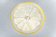 Una rebanada del limón Fotos de archivo