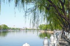 Una reflexi?n maravillosa de la orilla, parque de Houhai, Pek?n China fotografía de archivo