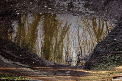 Una riflessione di specchio Immagine Stock