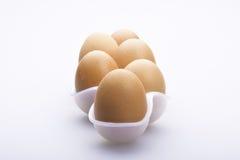 Una riga di sei uova Immagine Stock Libera da Diritti