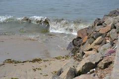 Una riva di morte! Fotografia Stock Libera da Diritti
