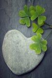 Una roca en forma de corazón gris con los tréboles verdes Fotos de archivo libres de regalías