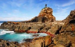 Una roccia dell'albero, Australia Fotografie Stock