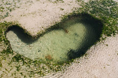 Una roccia sotto forma di un cuore durante la bassa marea Fotografia Stock