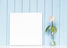Una rosa in bianco di bianco e della tela nella bottiglia Fotografia Stock