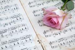 Rosa del rosa en notas de la música Fotos de archivo