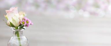 Una rosa para el día de madres Imagen de archivo
