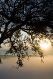 Una salida del sol Imágenes de archivo libres de regalías