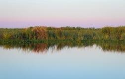 Una salida del sol hermosa sobre humedales en la Florida central imagen de archivo libre de regalías