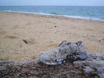 Una scarpa-barca dopo un viaggio dell'rotondo--oceano immagine stock