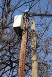 Una scatola della rete telefonica alta su una colonna di legno nel parco Fotografie Stock Libere da Diritti
