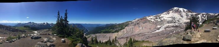 Una scena dal Mt più piovoso nello Stato del Washington Immagini Stock
