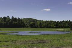 Una scena del paese con cielo blu Fotografia Stock Libera da Diritti