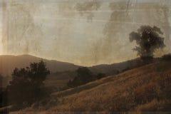 Una scena antica di paesaggio. Immagini Stock