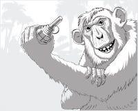Una scimmia con una granata Fotografie Stock Libere da Diritti