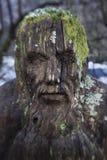 Una scultura di un fronte spaventoso nascosto nel legno fotografia stock