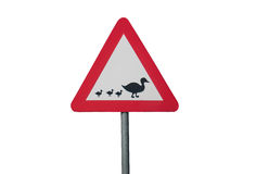 Una señal de tráfico con los patos Imagen de archivo