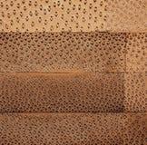 Madera de bambú Imagen de archivo