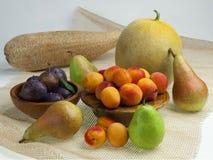 Una selezione delle pere, delle albicocche, delle prugne e di melon_2 Fotografie Stock