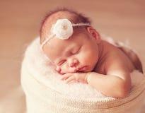 Una semana recién nacida vieja Foto de archivo