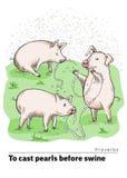 Una serie de postales con un cochinillo Proverbios y refranes No lance sus perlas a los cerdos fotografía de archivo libre de regalías