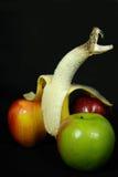 Una serpiente de la peladura imagen de archivo libre de regalías