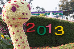 Año 2013 de la serpiente Fotografía de archivo libre de regalías