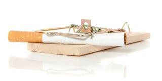 Una sigaretta in un mousetrap Fotografia Stock