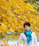 Una signora in autunno dorato Fotografia Stock
