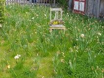 Una silla con las flores y los clavos marchitados Fotografía de archivo libre de regalías