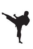 Una silueta de un hombre del karate Foto de archivo libre de regalías