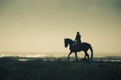 Una siluetta del cavaliere sul Horseback/sul retro stile Fotografie Stock