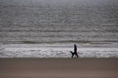 Una siluetta dell'uomo che cammina con un cane sulla spiaggia immagini stock
