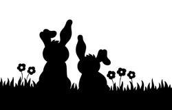 Una siluetta di due conigli sul prato Fotografia Stock