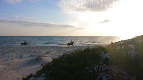 Una siluetta di tre cavalieri del cavallo che galoppano dalla spiaggia vuota archivi video