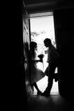 Una siluetta di un baciare baciante dello sposo e della sposa fotografia stock libera da diritti
