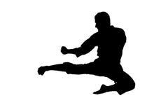Una siluetta di un salto di karatè Fotografia Stock Libera da Diritti