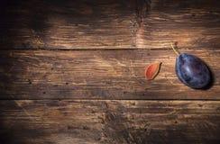 Una singola prugna e una pietra della prugna su un bordo di legno scuro Priorità bassa della frutta Spazio del testo Vista superi immagini stock libere da diritti