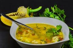 Una sopa deliciosa con las verduras y los pescados en un fondo negro Fotografía de archivo libre de regalías