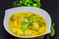 Una sopa deliciosa con las verduras y los pescados en un fondo negro Foto de archivo