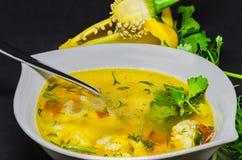 Una sopa deliciosa con las verduras y los pescados en un fondo negro Foto de archivo libre de regalías