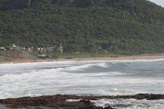 Una spiaggia è non solo una spazzata della sabbia, ma coperture delle creature del mare, il vetro del mare, l'alga immagine stock