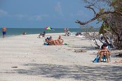 Una spiaggia di Florida Immagini Stock