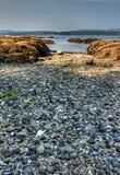 Una spiaggia rocciosa fuori di Victoria, BC Immagini Stock Libere da Diritti