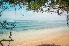 Una spiaggia tropicale con acqua cristallina nel telaio di spirito degli alberi Fotografie Stock Libere da Diritti
